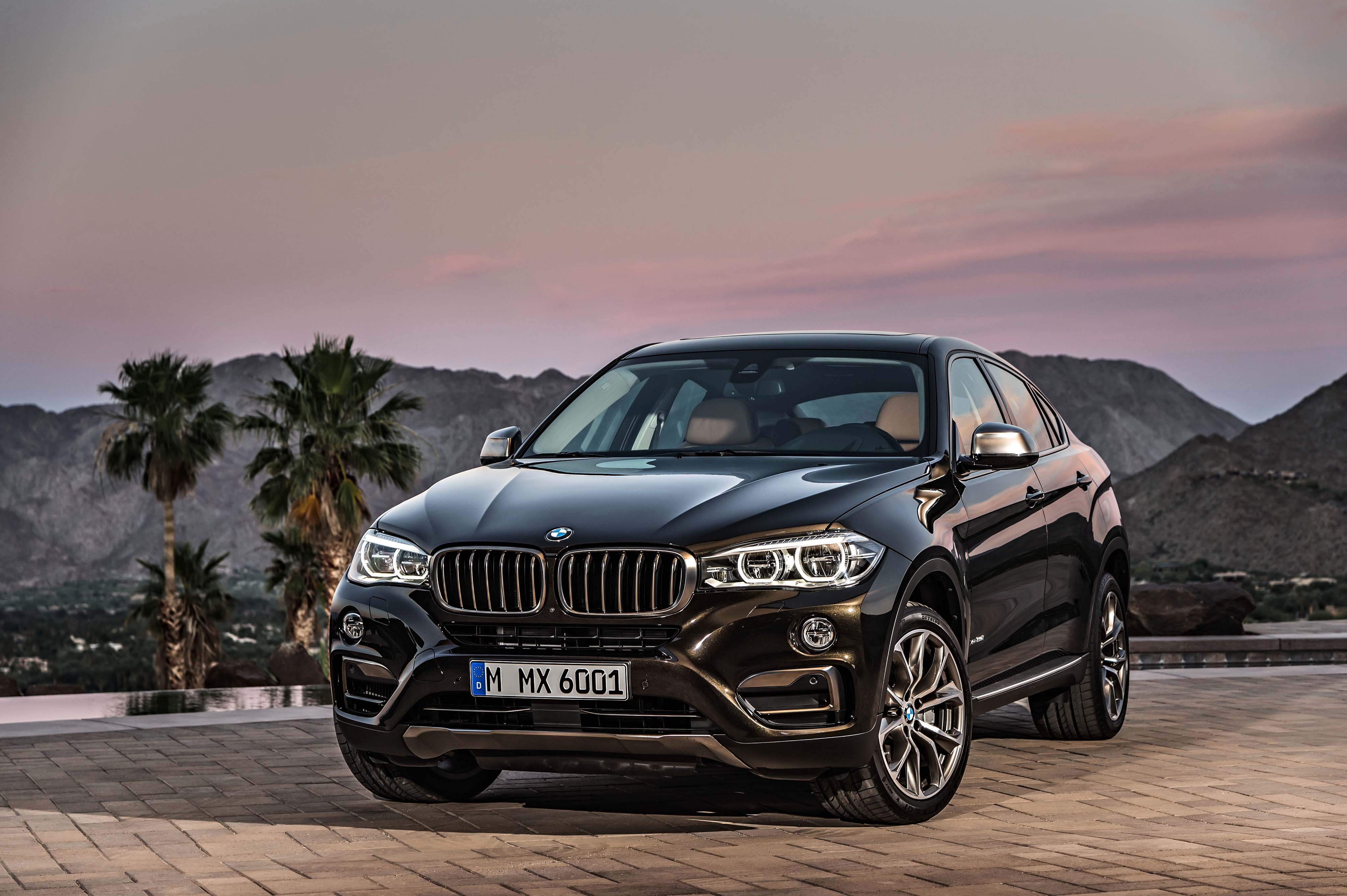 BMW X6: frontal
