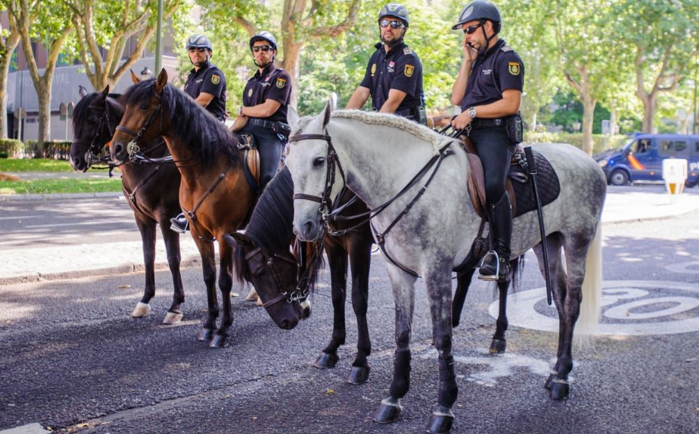 Policía Nacional fuerzas de seguridad y orden