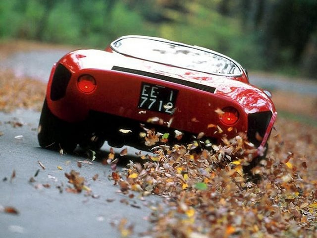 Alfa Romeo Tipo 33 Stradale: trasera