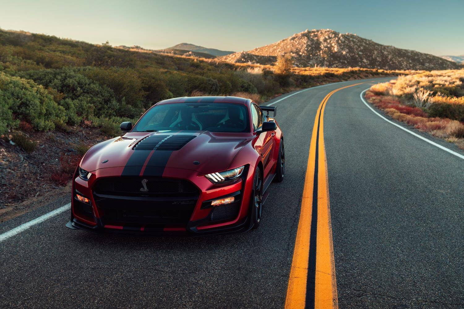 Ford Mustang Shelby GT500 2020: frontal