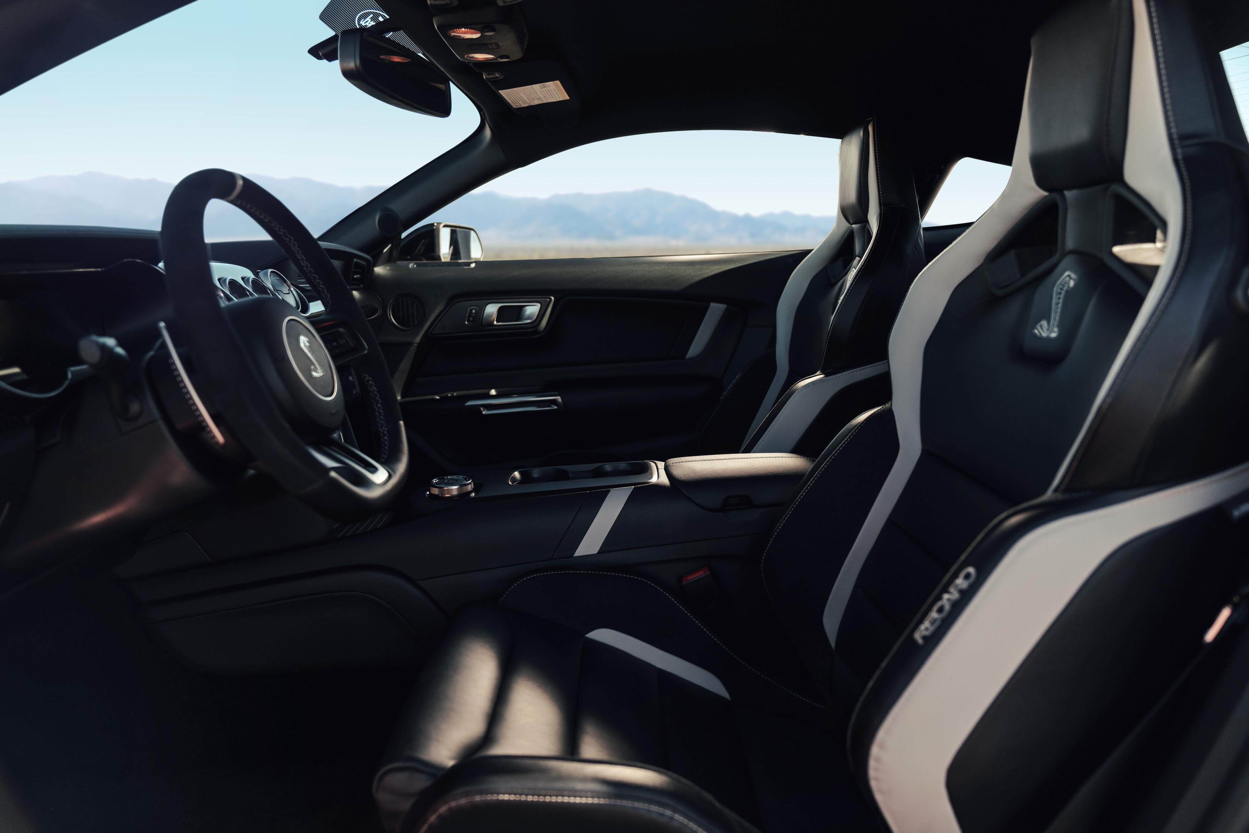 Ford Mustang Shelby GT500 2020: interior